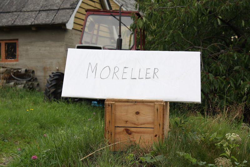 090729_Moreller-0554