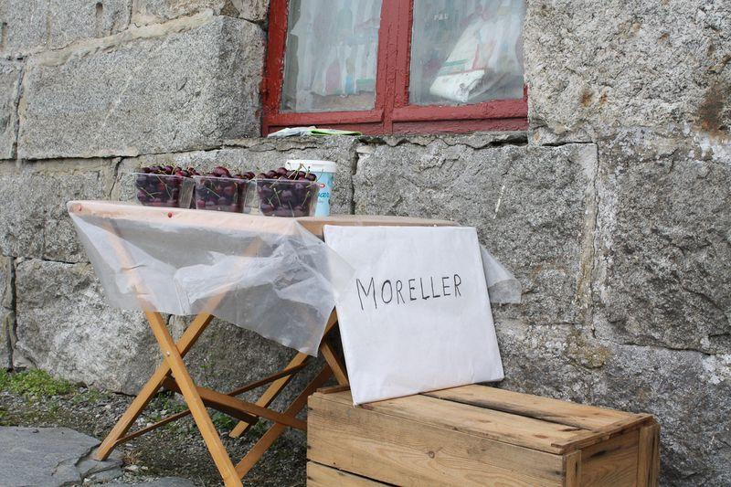090729_Moreller-0551