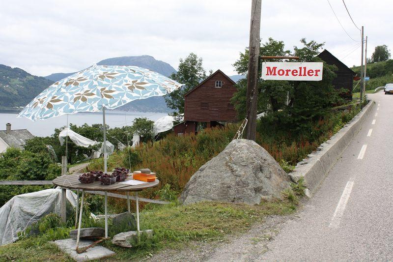 090729_Moreller-0352