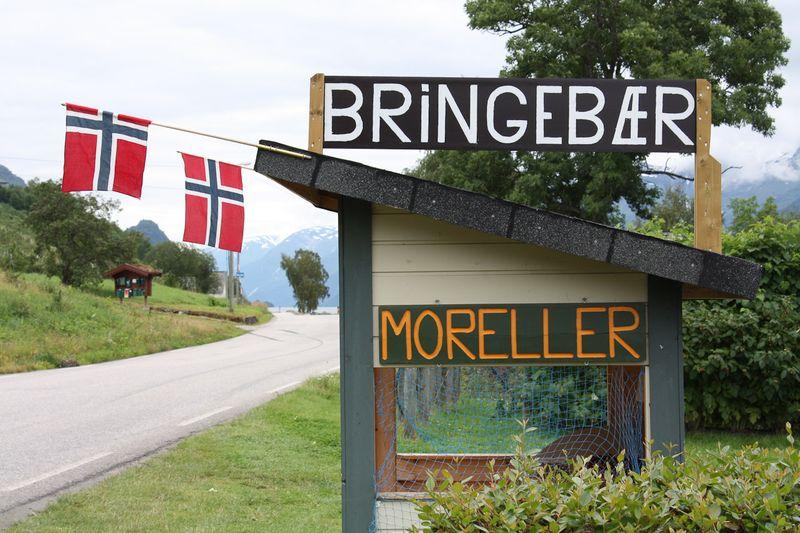 090729_Moreller-0360