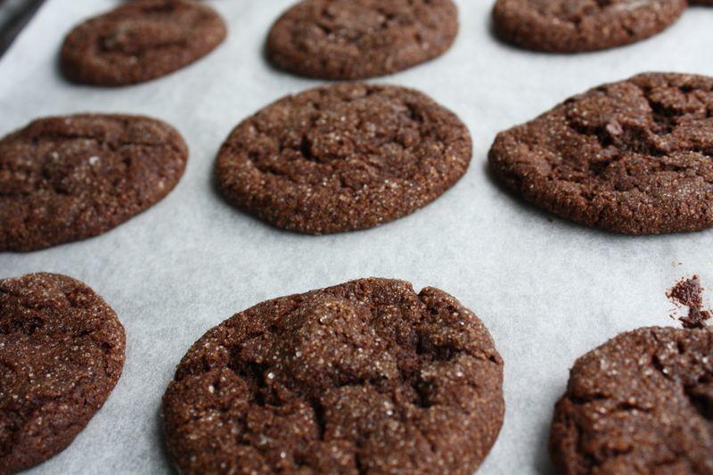 090816chocogingercookies-1240