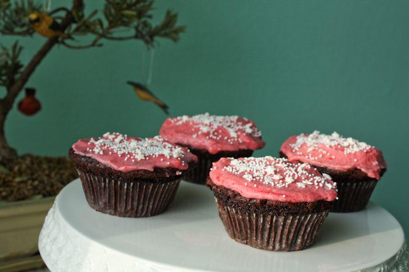 100214raspberrycupcakes-2388