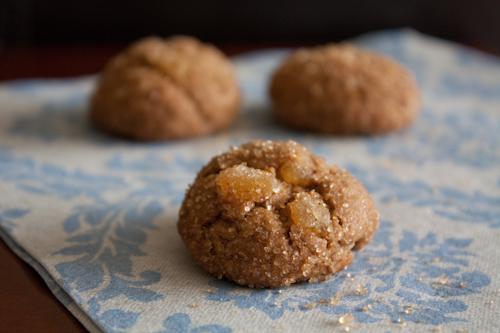100915threegingercookies-9193