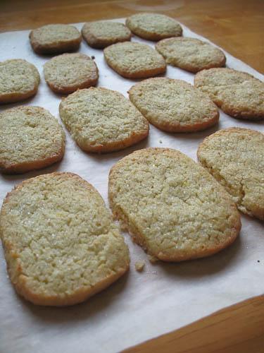 100629limecookies-8565