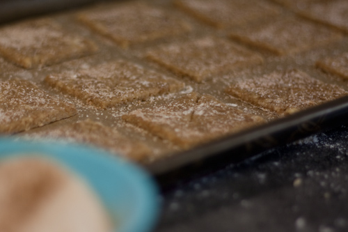 110224grahamcrackers-3070