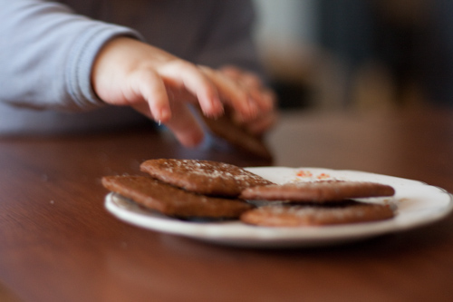 110224grahamcrackers-3105